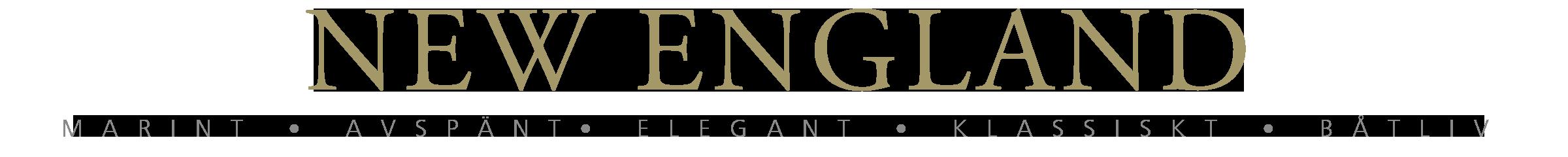 New England Retina Logo